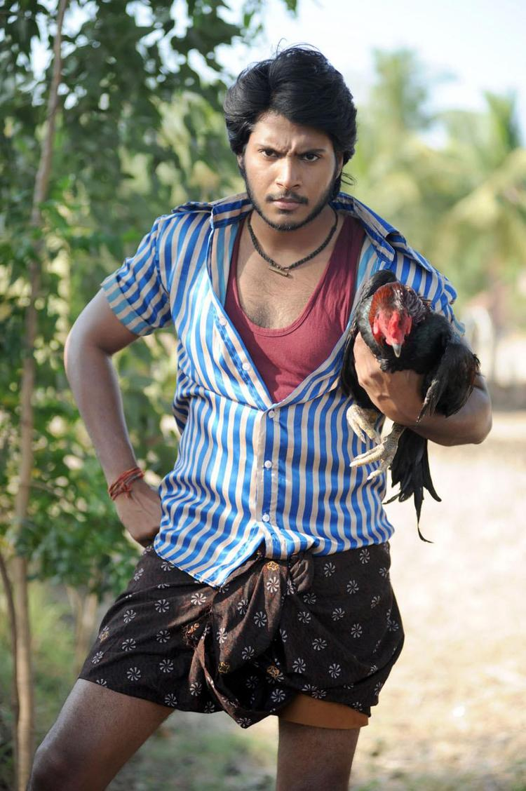 Sundeep Dashing Pose With A Cock Photo Stills From Movie Gundello Godari