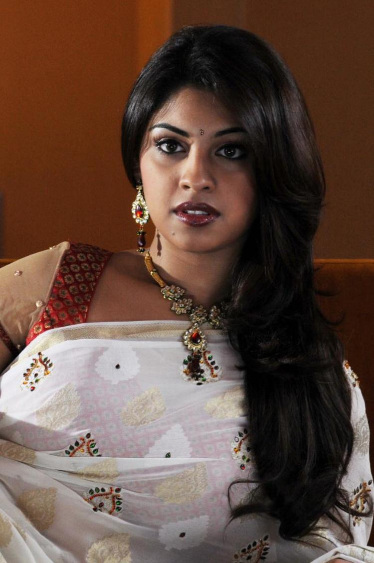 Richa Gangopadhyay Sizzling And Attractive Photo Still