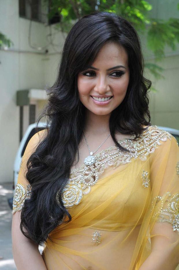 Sana Khan Smiling Look At Nadigayin Diary Movie Audio Launch Function