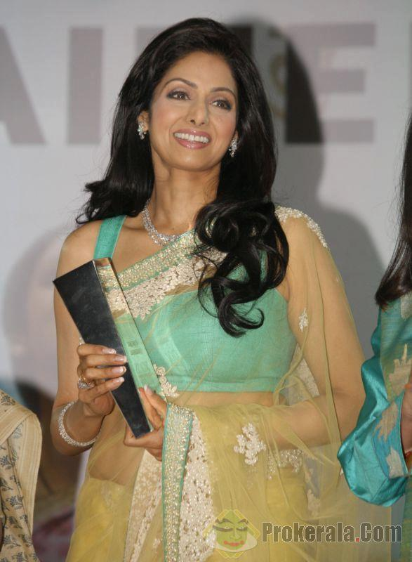 Sridevi Stunning Look Photo Clicked At The NDTV Indian Of The Year Award Function
