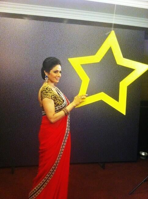 Sridevi Kapoor Posed For Camera At The India Today Woman Summit Awards 2013