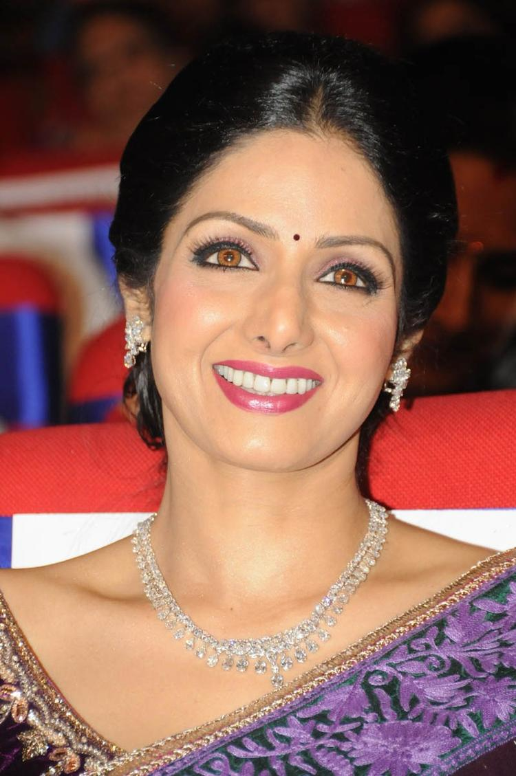 Sridevi Kapoor Cute Face Look At TSR TV9 Film Awards Function