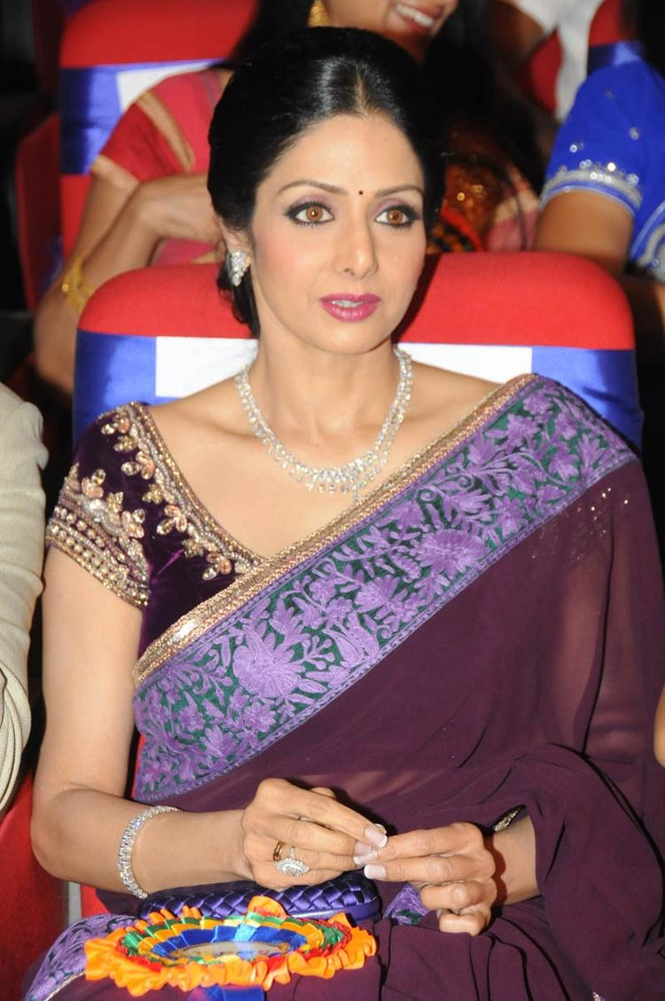 Sridevi Kapoor Glamour Look In Saree At TSR TV9 Film Awards Function