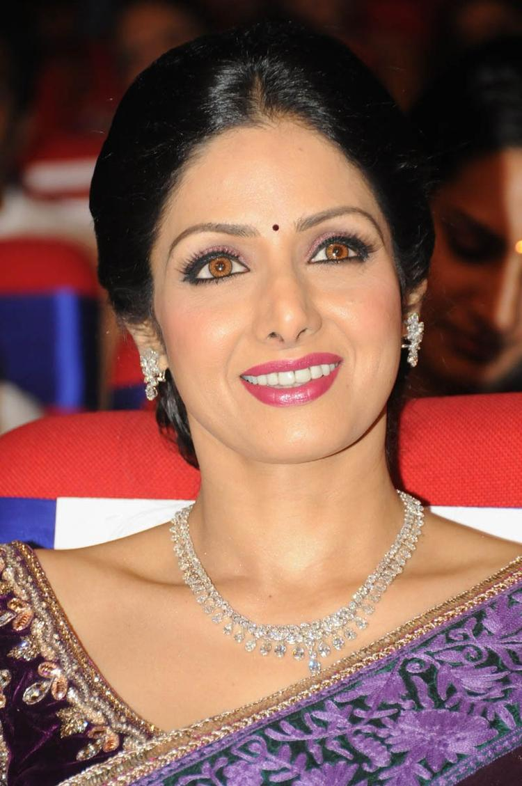 Sridevi Kapoor Smiling Look At TSR TV9 Film Awards Function