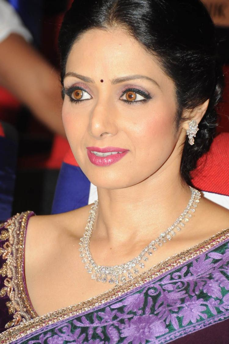 Sridevi Kapoor Stunning Face Look At TSR TV9 Film Awards Function