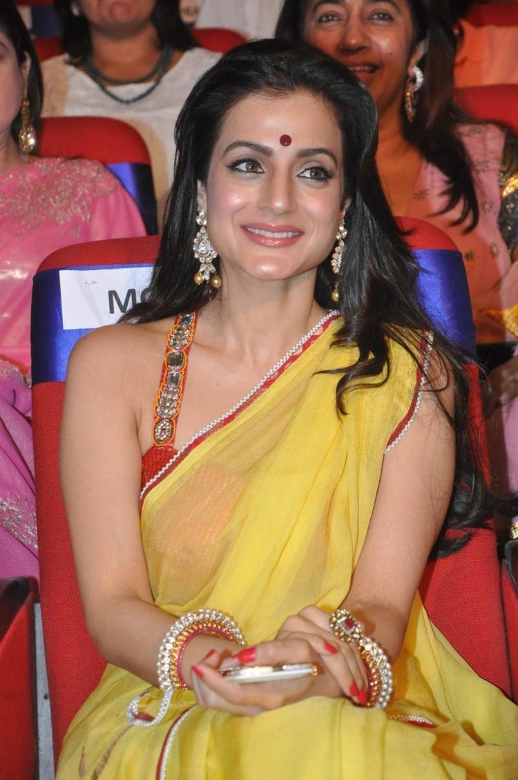 Ameesha Patel Smiling Look At TSR TV9 Film Awards Function