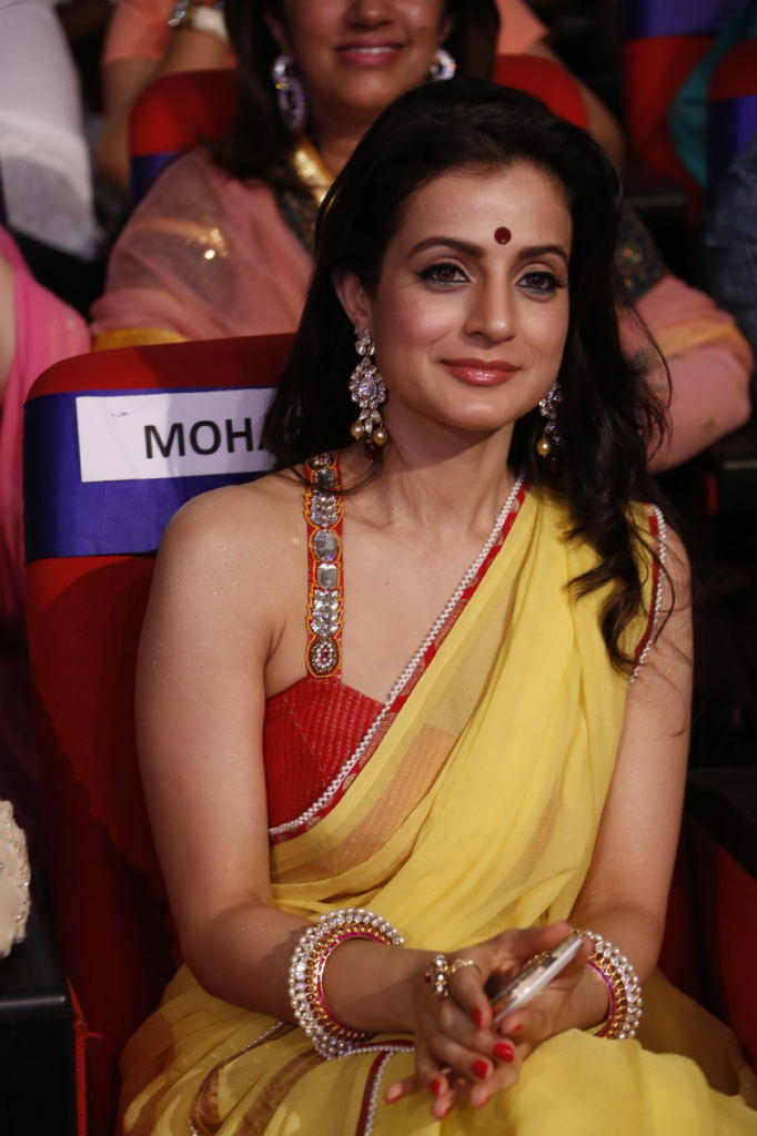 Ameesha Patel Traditional Look In Saree At TSR TV9 Film Awards Function
