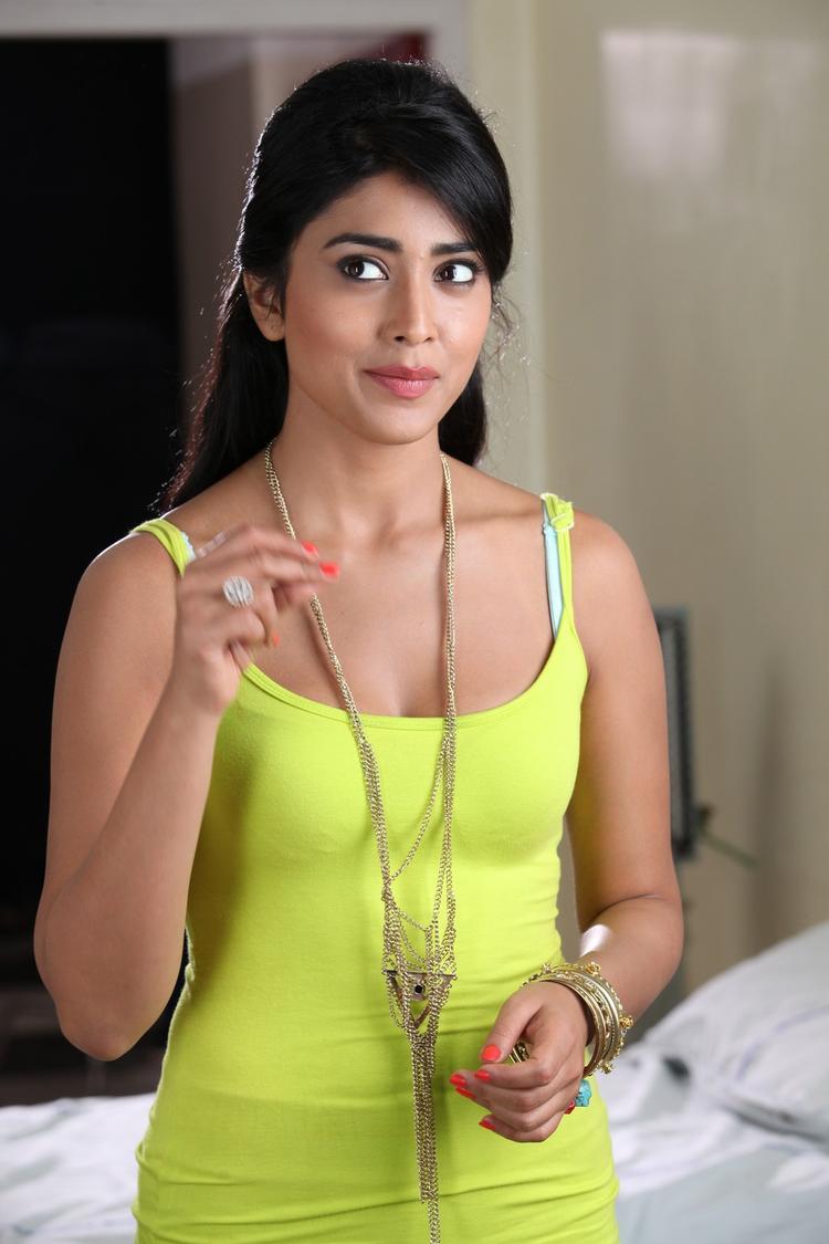 Shriya Saran Cool Still From Pavitra Movie