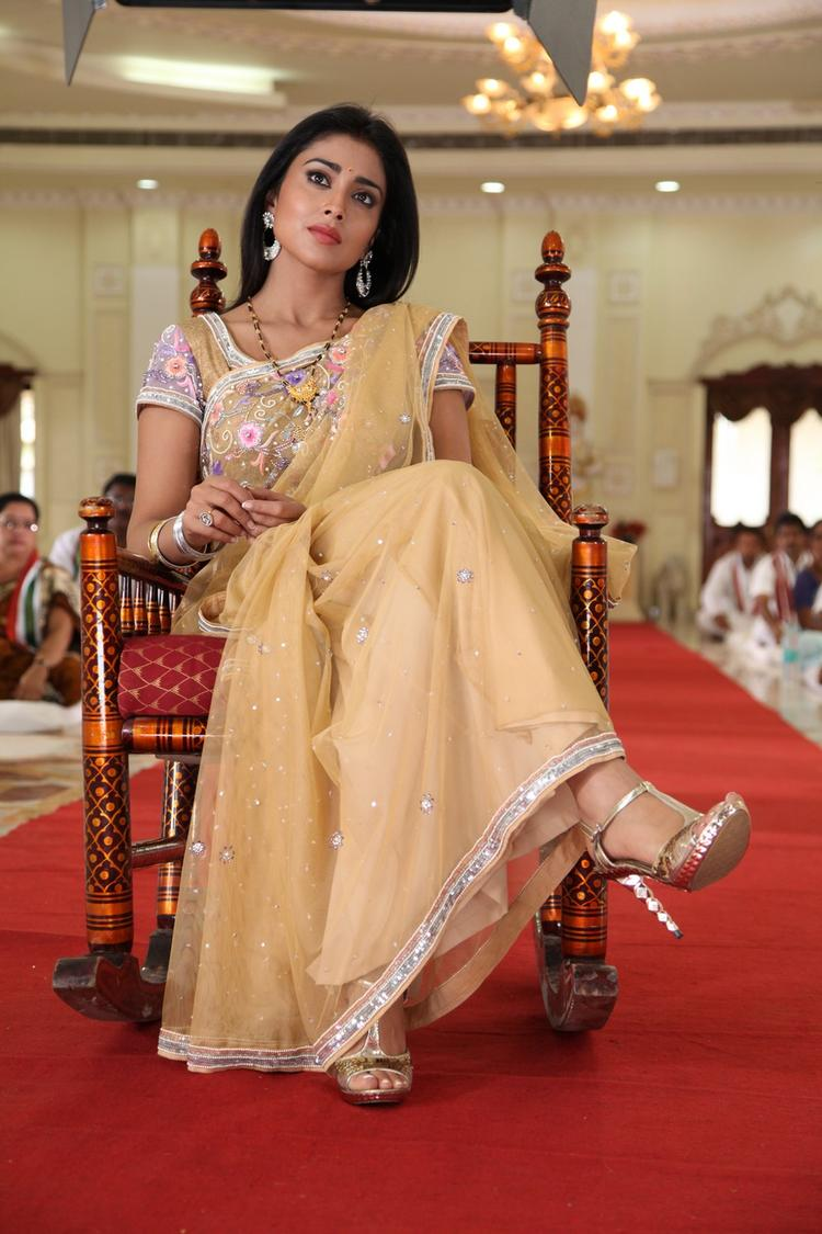 Shriya Saran NIce Look Still From Pavitra Movie