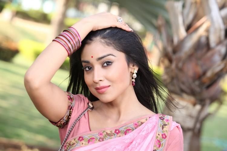 Shriya Saran In Pink Saree Stylish Look Still From Pavitra Movie