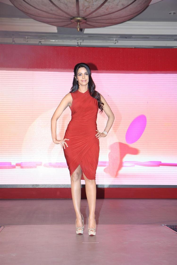 Mallika Sherawat Sexy Look In Red Ensembles At Life OK Press Meet