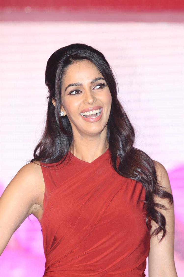 Mallika Sherawat Smiling Look At Life OK Press Meet