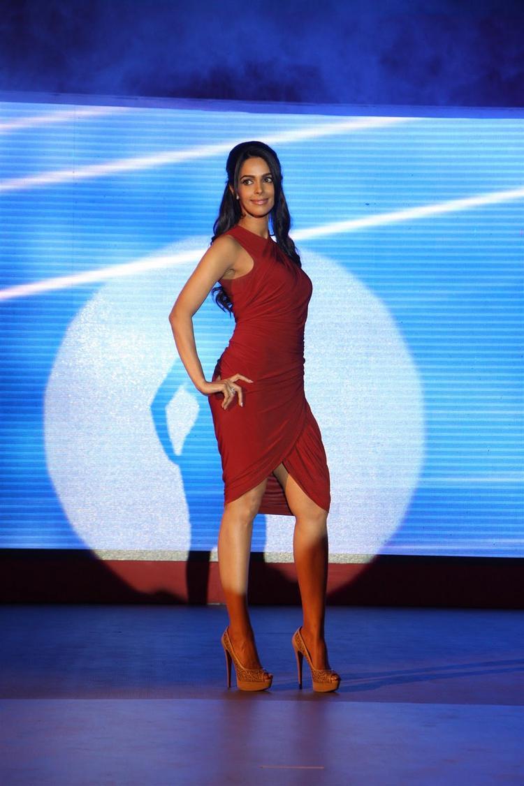 Mallika Sherawat Strikes A Stylish Pose At Life OK Press Meet