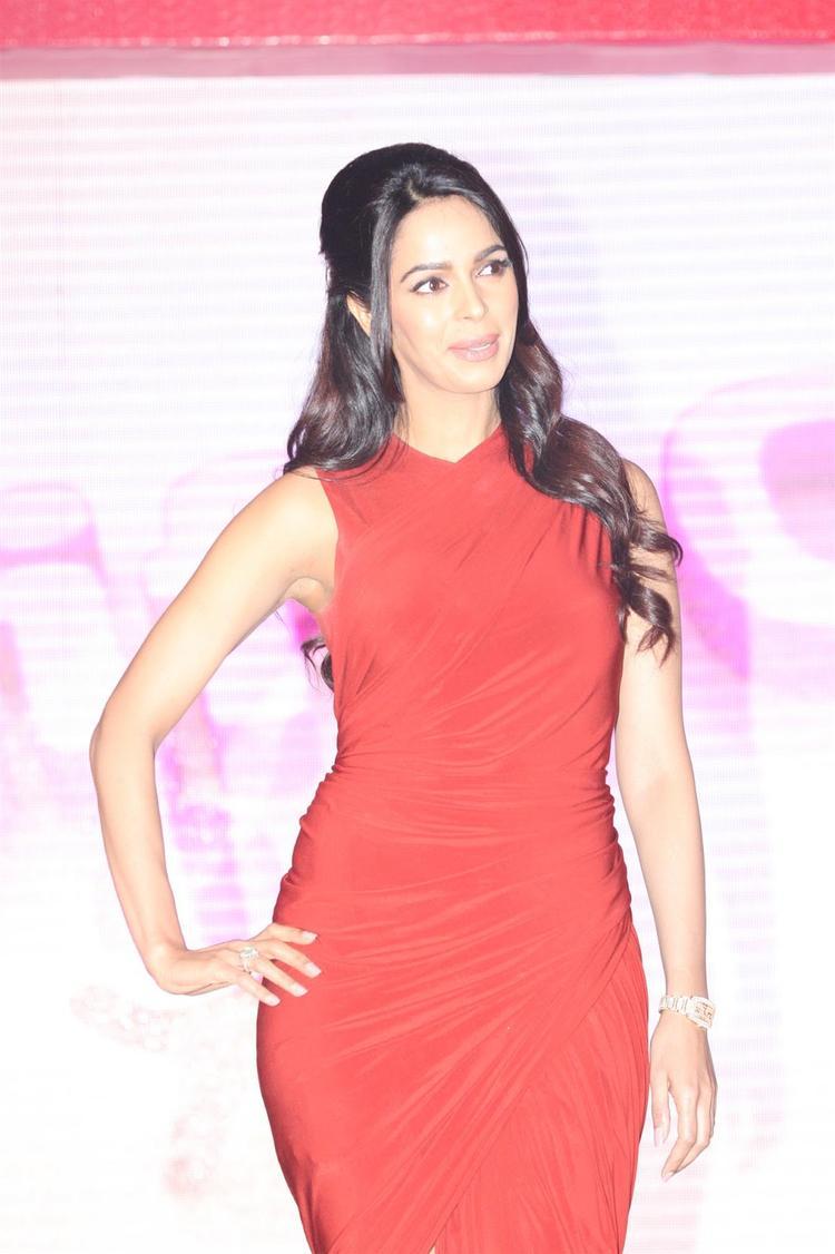 Sexy Mallika Sherawat Stunning Look At Life OK Press Meet