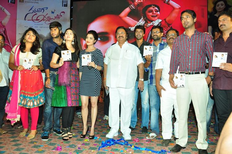 Sundeep,Charmy,Nisha,Dasari Narayana,Allari,Varun And Others Graced At Saradaga Ammaitho Movie Audio Launch Function