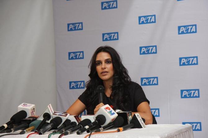 Neha Dhupia Addresses The Media At The New Pro-Veg Ad Campaign For PETA