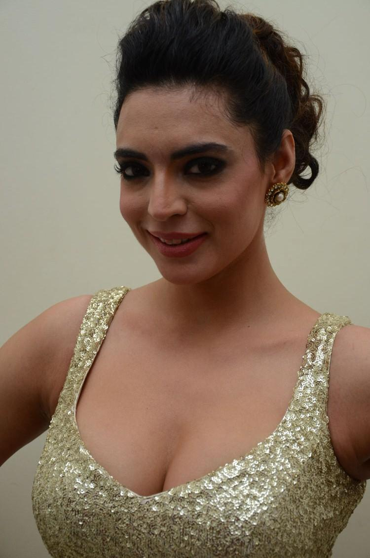 Shweta Bhardwaj Hot Look Still At Adda Movie Audio Release Function