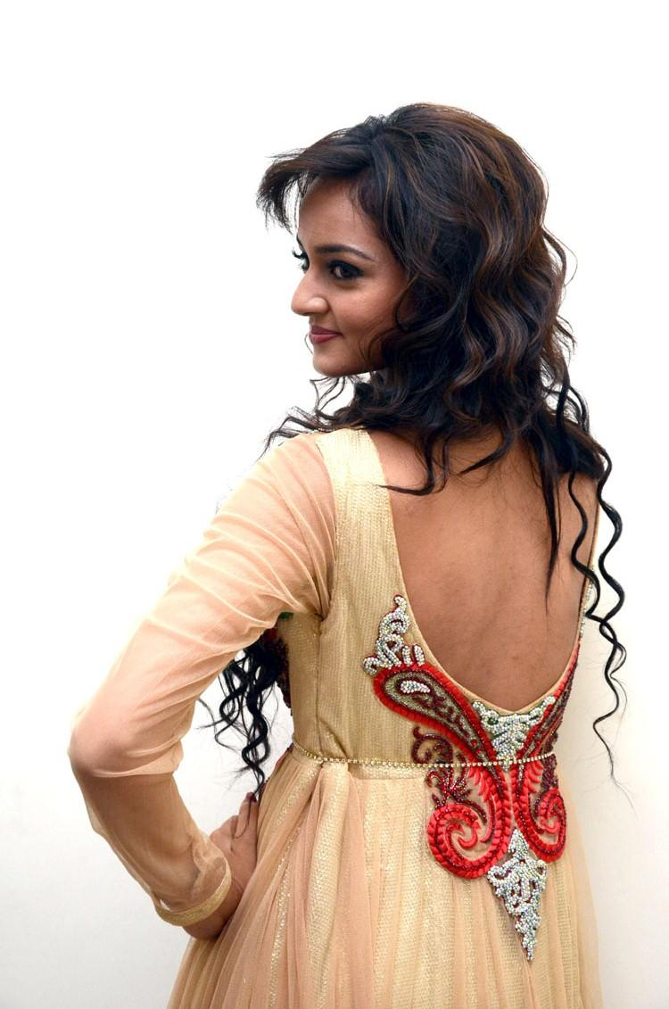 Shanvi Back Show Hot Look Still At Adda Movie Audio Release Function