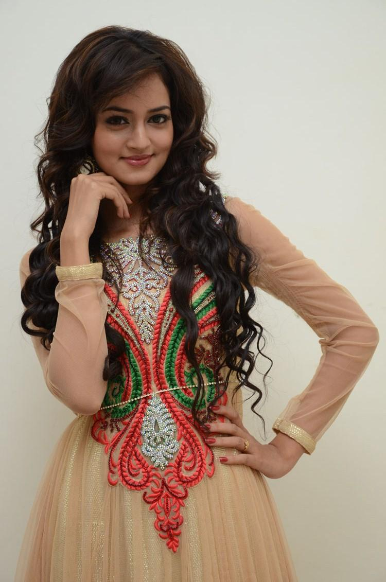Shanvi Cute And Beautiful Face Look Still At Adda Movie Audio Release Function