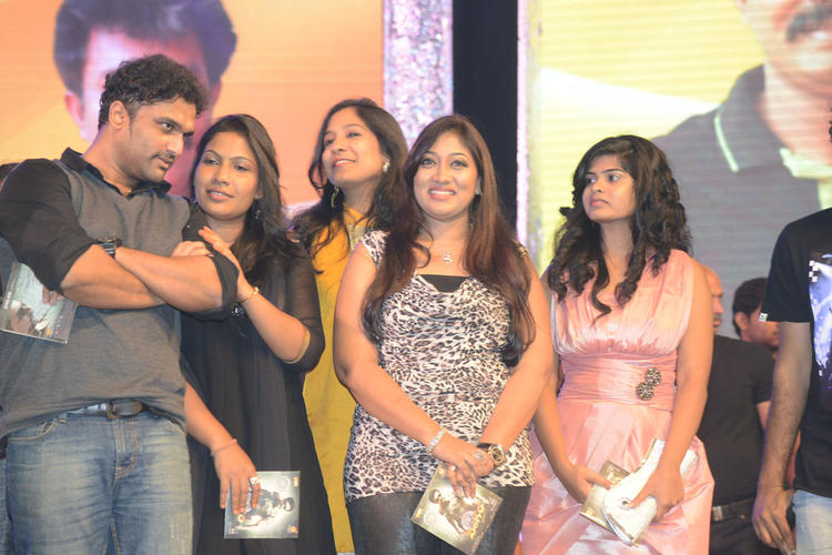 Celeb Guests Are Cool Look On The Stage At Singam II Audio Release Function