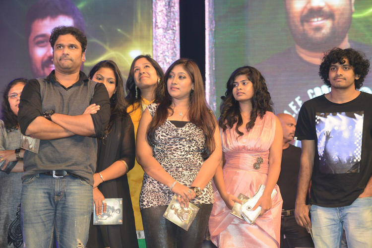 Celeb Guests Are Posed For Camera At Singam II Audio Release Function