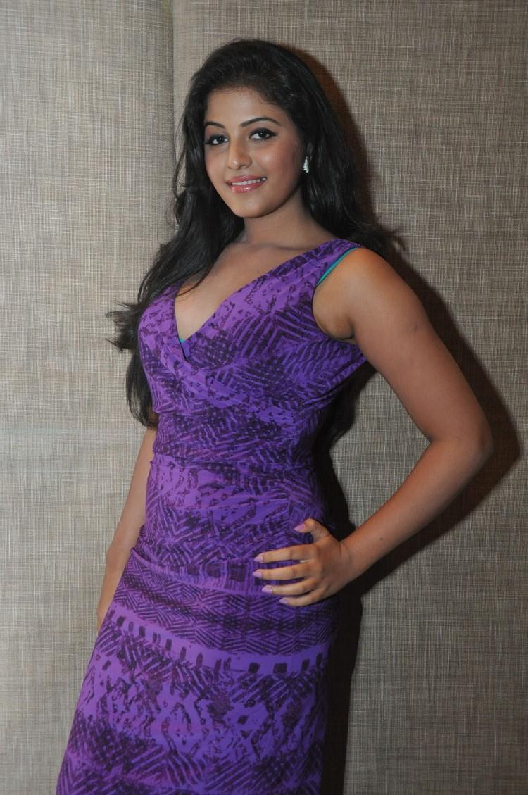 Pretty Anjali Strikes A Pose At Balupu Movie Success Meet