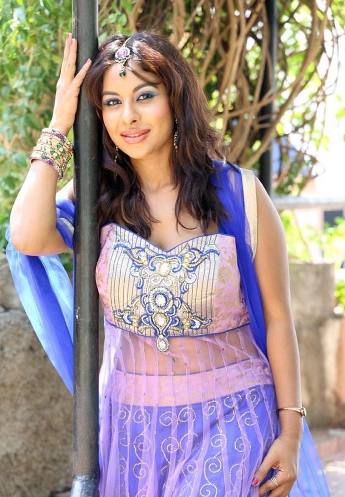 Srilekha Reddy Strikes A Posed For Camera At Vastravarnam Expo-2013