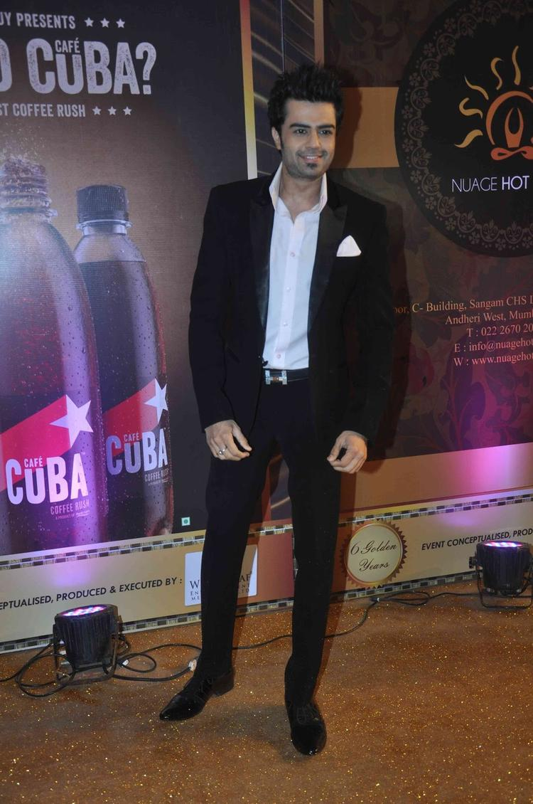 Manish Paul Strikes A Pose During The Boroplus Gold Awards 2013