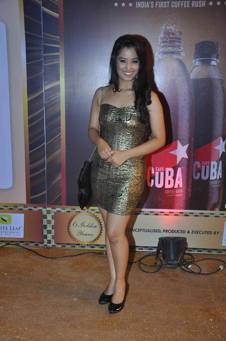 Srishty Rode Sexy Look At The Boroplus Gold Awards 2013