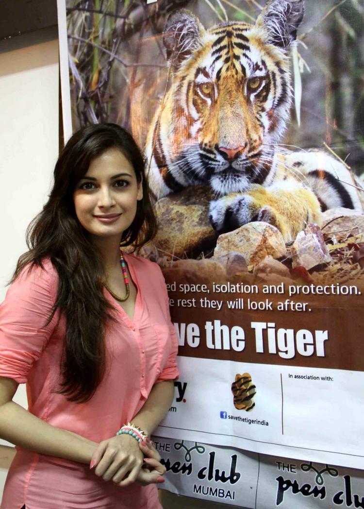 Dia Mirza Gets Clicked During The Promotion Of Save The Tiger Campaign