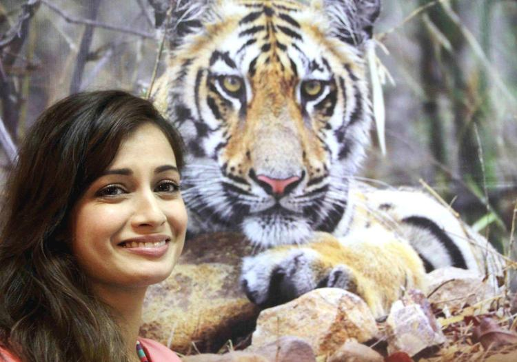 Dia Mirza Smiling Pose At Save The Tiger Campaign