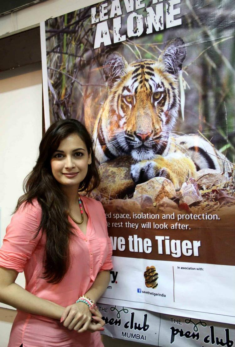 Dia Mirza Snapped To Promote Save The Tiger Campaign