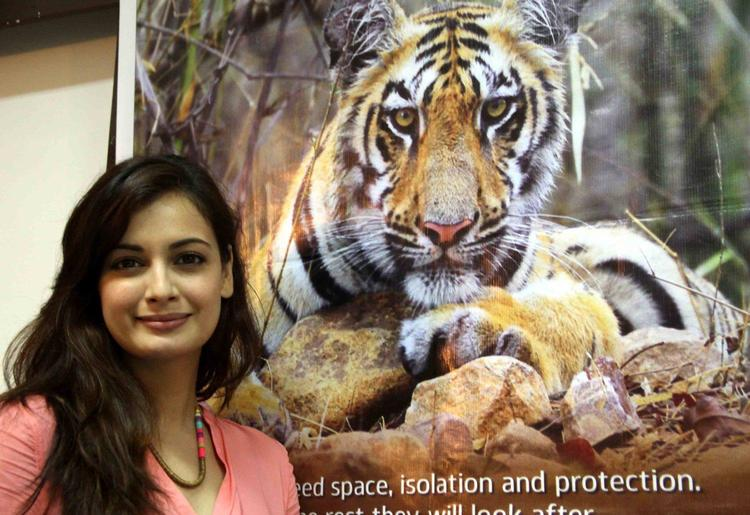 Former Beauty Queen Dia Mirza Arrives At The Promotion Of Save The Tiger Campaign