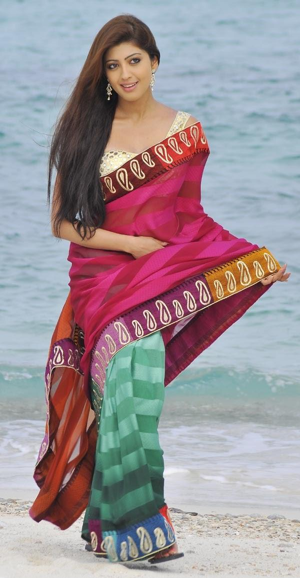 Pranitha Dual Color Saree Sizzling Photo Shoot From The Movie Angaraka