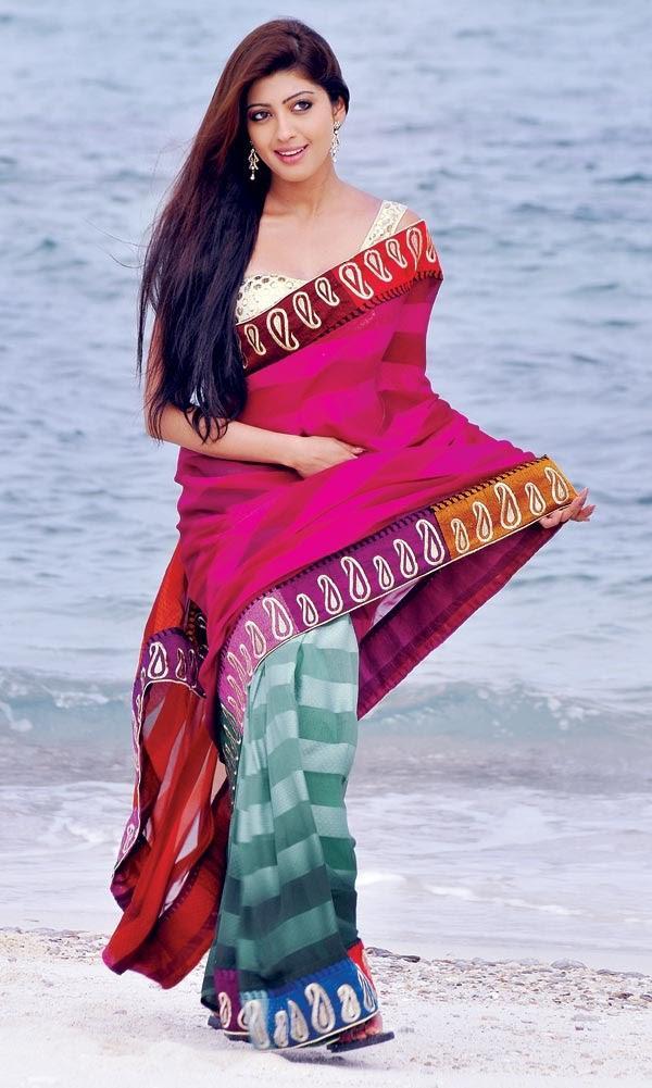 Pranitha Looking Stunning In Saree From The Movie Angaraka