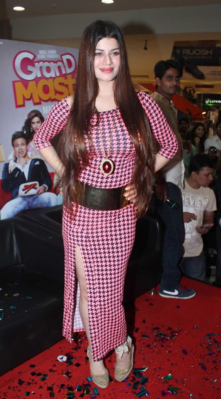 Hot Celebs Pose During The Audiao Launch Of Grand Masti