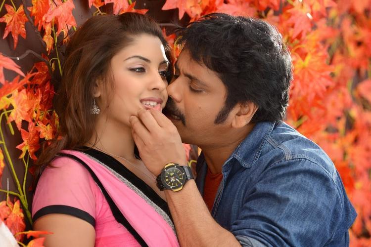 Nagarjuna Kisses Richa Hot Still Still From Bhai Movie