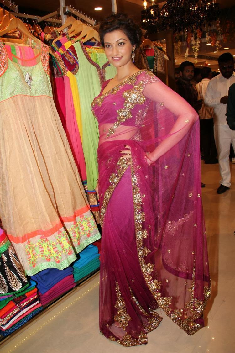 Hamsa Nandini Sizzles In Saree During The Launch Of Kalamandir Saree Showroom At Hyderabad