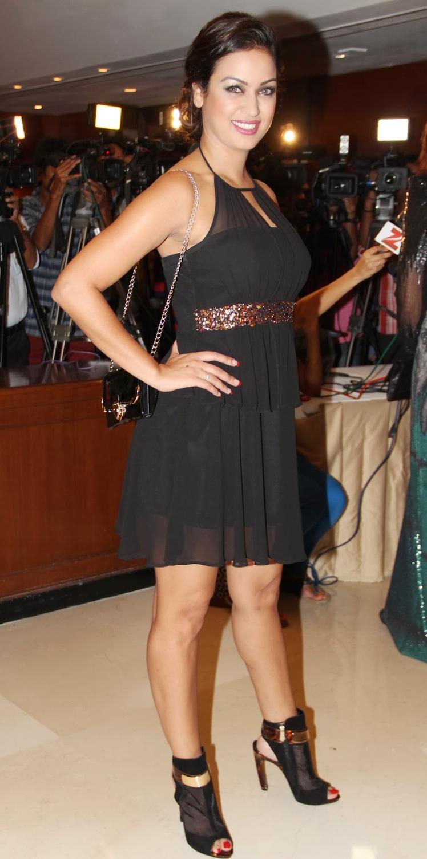 Hot Maryam Zakaria At The Grand Masti 100 Crores Success Bash