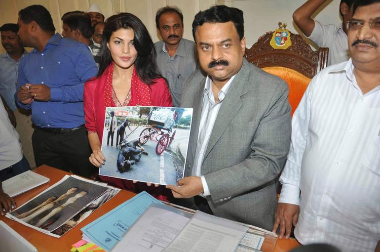 Hot Jacqueline Meet Sunil To Joins Hands With PETA To Ban Horse Carriages