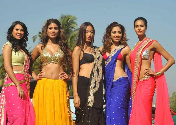 Rochelle Maria,Nicole,Ketho Leno,Sobhita And Rikee Hot And Sexy Pose At Kingfisher 2013 Calendar Launch Event