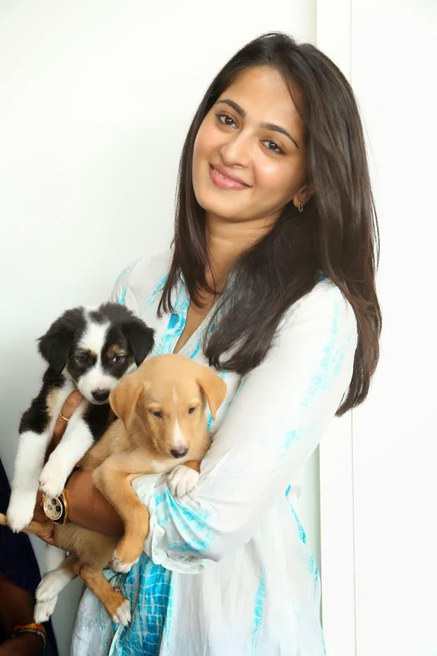 Anushka Shetty Cool With Puppy At Blue Cross Pet Carnival 2014 Event