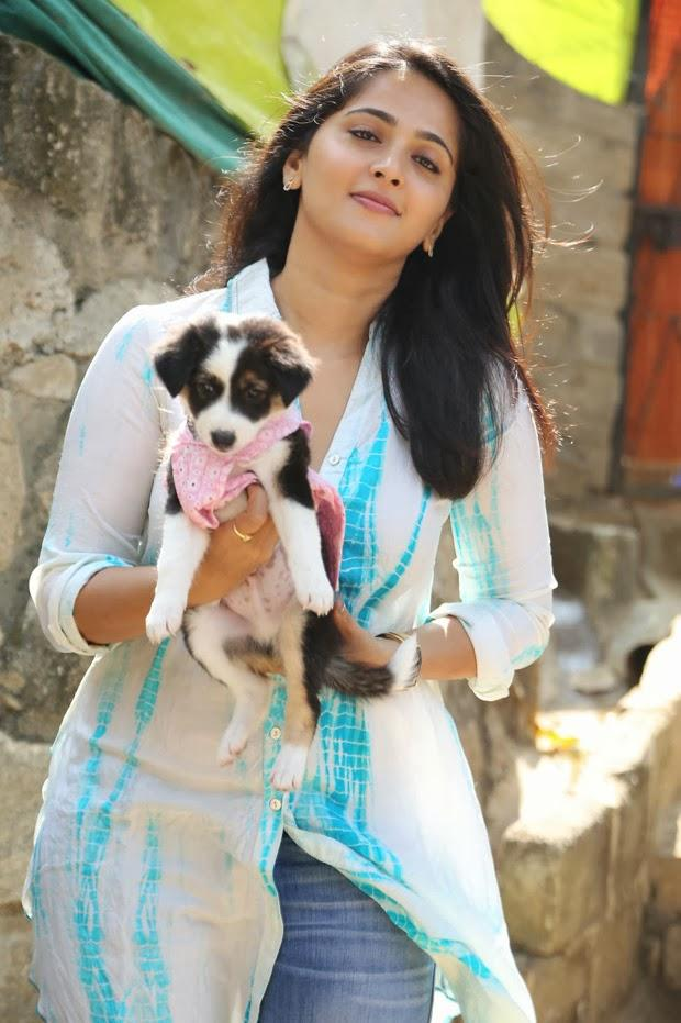 Anushka Shetty Posed With A Puppy At Blue Cross Pet Carnival 2014 Event