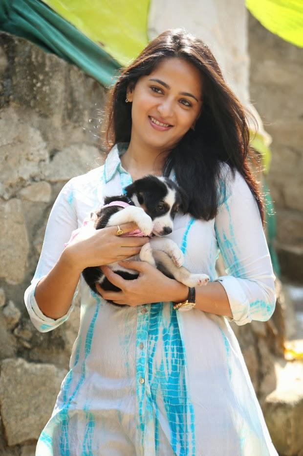 Anushka Shetty Smiling Pose With A Puppy At Blue Cross Pet Carnival 2014 Event