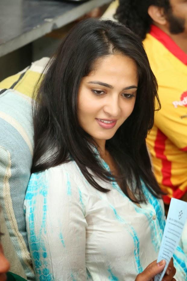 Anushka Shetty Stunning Face Look At Blue Cross Pet Carnival 2014 Event