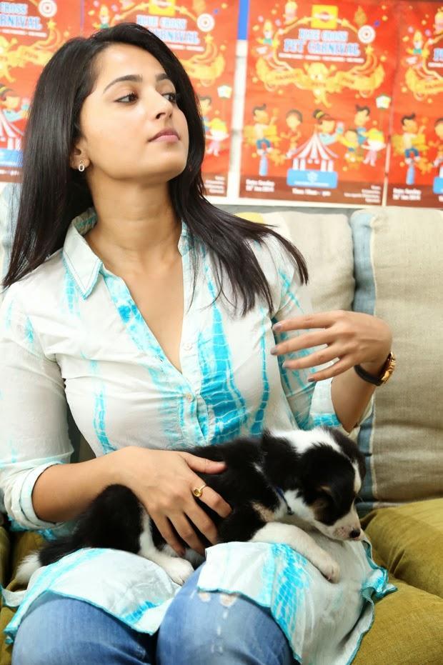 Anushka Shetty Stylish Look At Blue Cross Pet Carnival 2014 Event