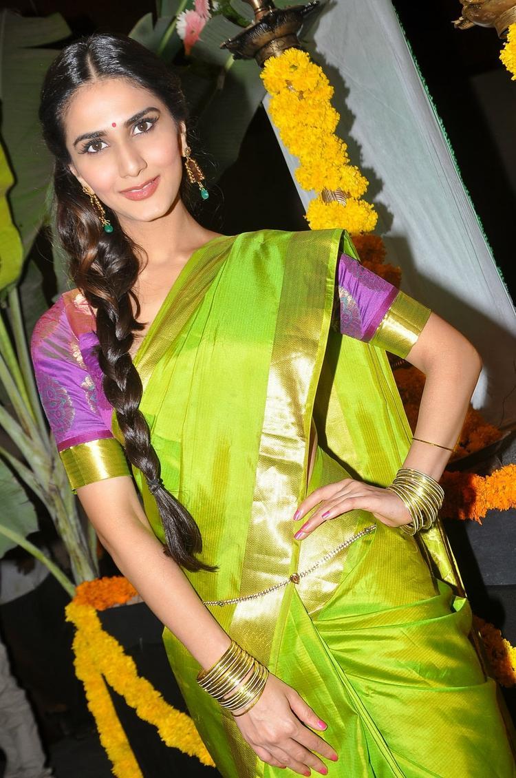 Aaha Kalyanam Audio Launch Event Vaani Kapoor Radiant Pic In Saree