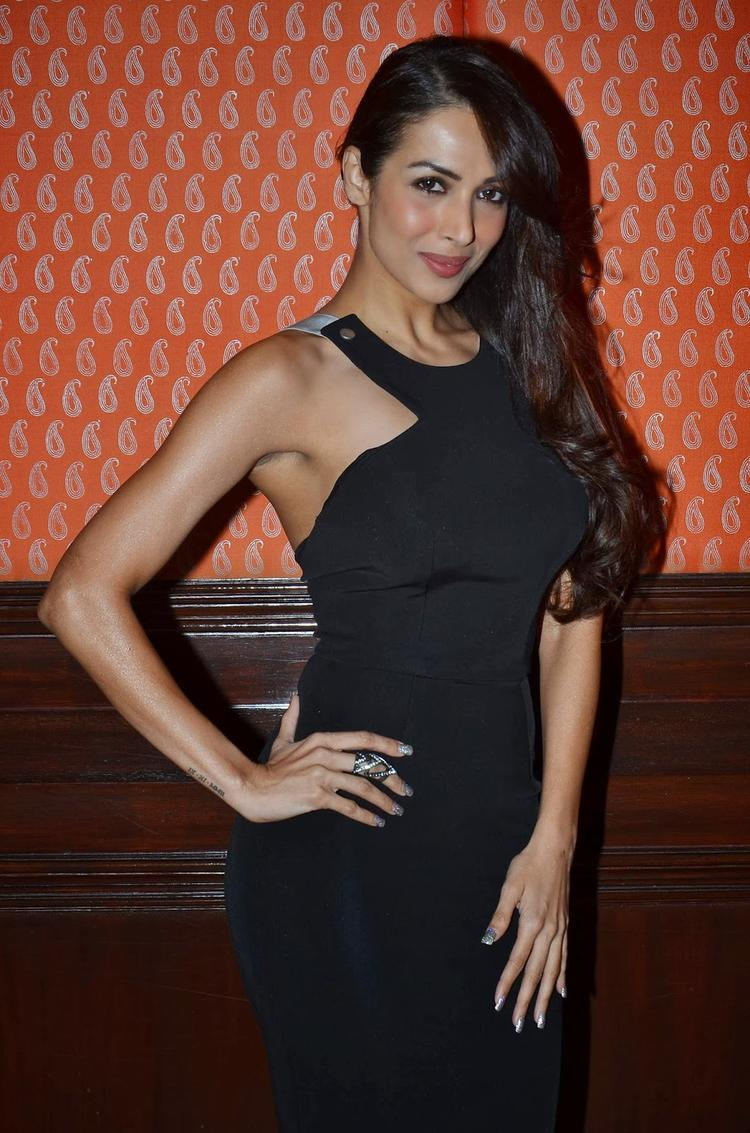 Malaika Strikes Sweet Sexy Pose For Camera At The IFFM 2014 Press Conference