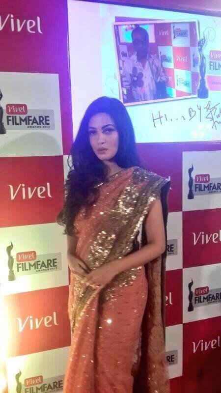 Riya Radiant Pic In Saree At The Vivel Filmfare Awards 2014 Event