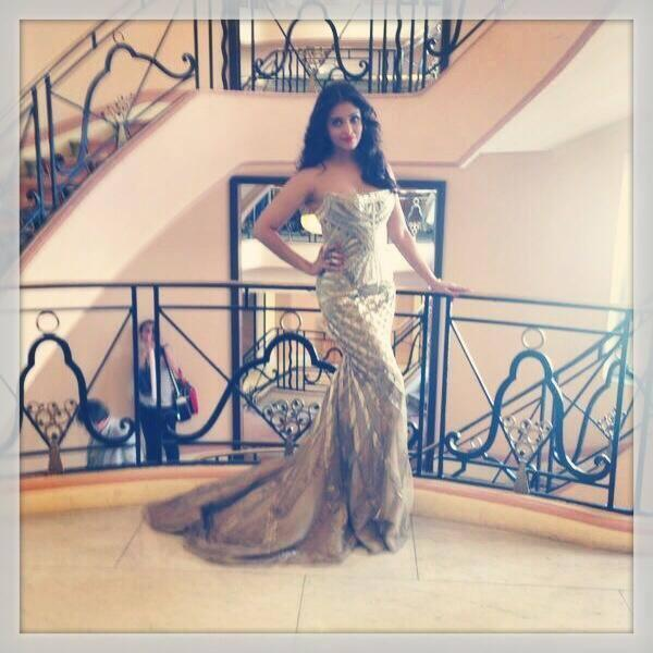 Aishwarya Rai Bachchan In Robert Cavalli Gown At The Cannes 2014 Film Festival